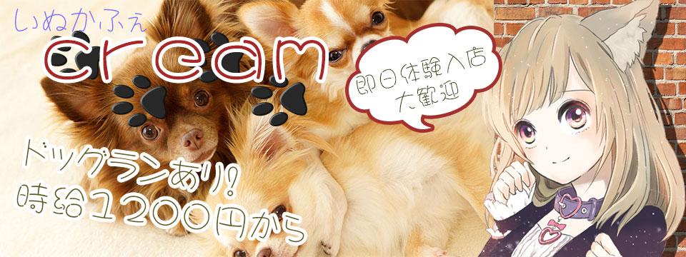 【NEW】Cream【OPEN】