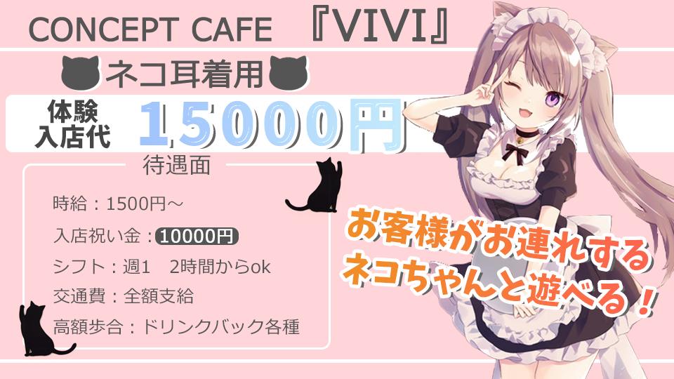 コンセプトカフェ 猫耳喫茶VIVI